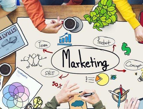 A Maximum Business 360 fokos Web és Marketing Ügynökség